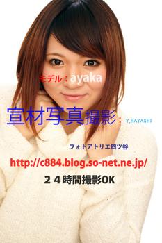 DSC02462.jpg