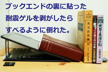 DSC07142.jpg